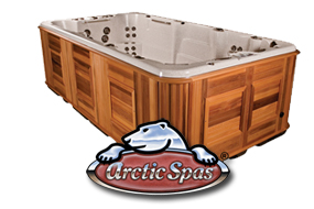 Arctic Swim Spa