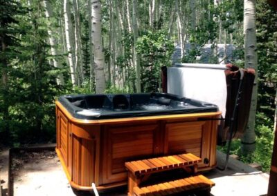 Arctic Spas hot tub in red cedar cabinet in the forest
