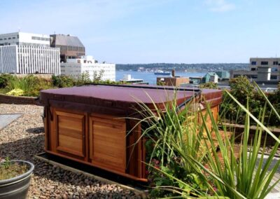 Arctic Spas hot tub in the backyard with a city view